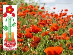 Have You Ever Heard of the Red Poppy Festival in Georgetown, Texas?