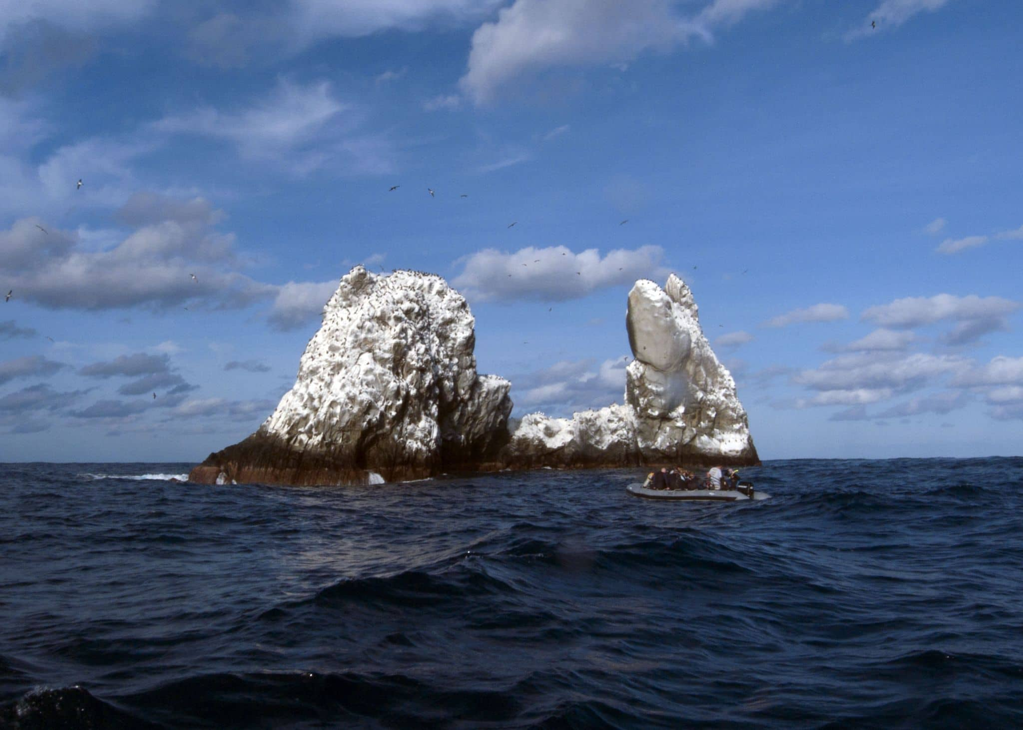 diving, roca partida, travels with tam