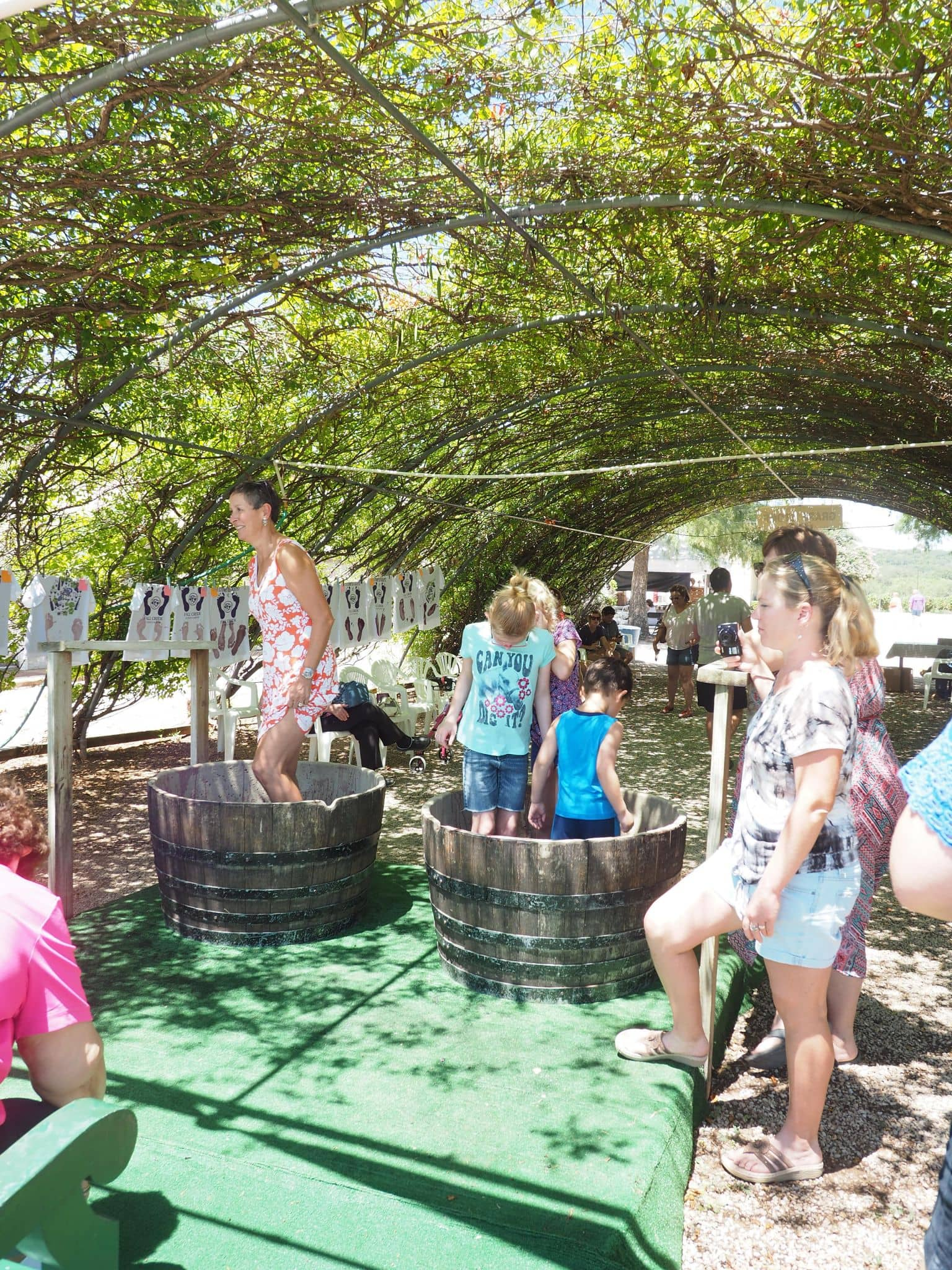 grape stomp, Fall Creek Vineyards, hill country, texas hill country